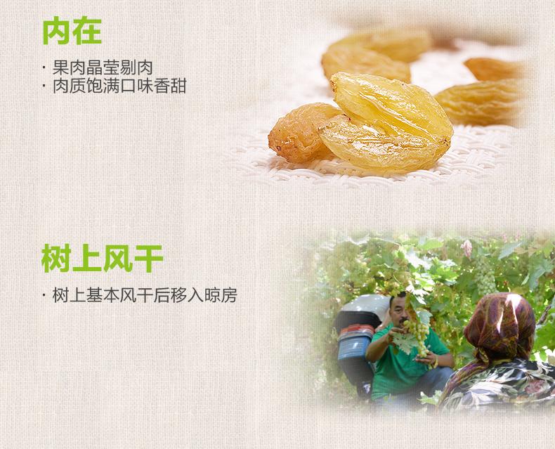 【西域美农_树上黄葡萄干500g】新疆特产吐鲁番提子干果零食 热销商品 第10张
