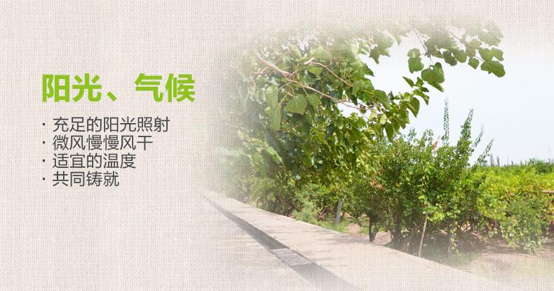 【西域美农_树上黄葡萄干500g】新疆特产吐鲁番提子干果零食 热销商品 第12张